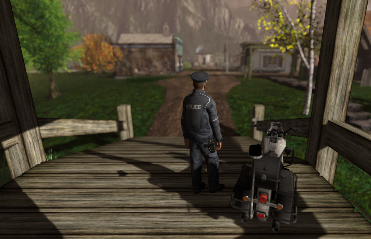 The policeman observes the town