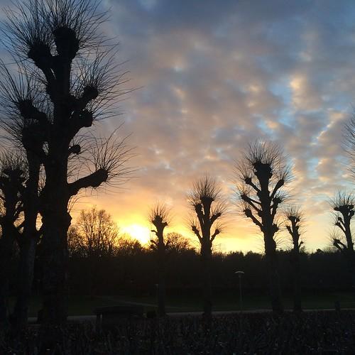 sunset graveyard oxelösund
