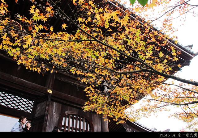 京都-永觀堂069