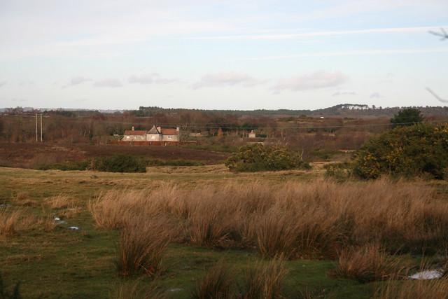Norden Common