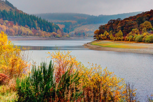 uk autumn colour fall water wales dam reservoir foliage elan midwales rhayader elanvalley welshwater mabjack garregddudam