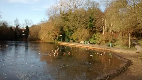 Mere Pond - Walton on the Hill