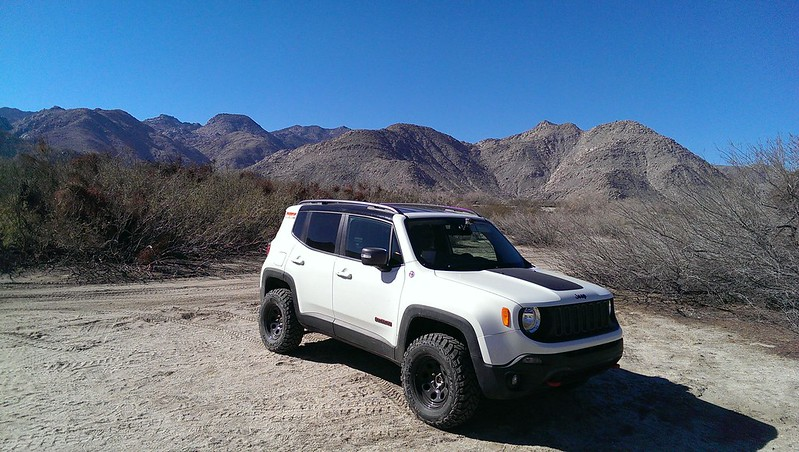 Renegade Daystar Lift >> White Alpine Out and About - Page 5 - Jeep Renegade Forum