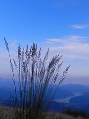 Dal Monte Lema
