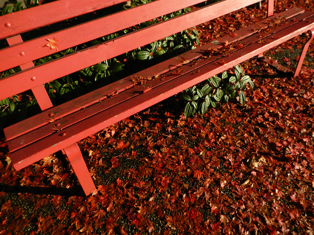 Red leaves on a red bench at November's Culture Crawl in Vancouver