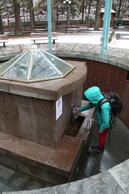 The Orginal Borjomi Spring Water location