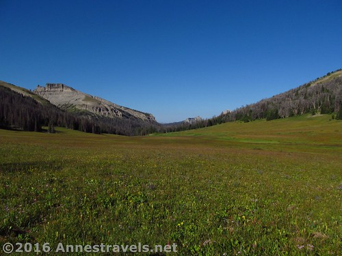 Looking back through Bonneville Pass, Shoshone National Forest, Wyoming