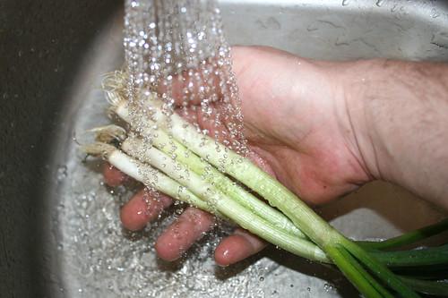 14 - Frühlingszwiebeln waschen / Wash spring onions