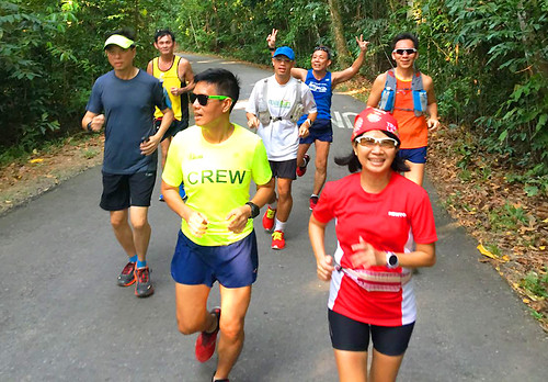 Pesta Ubin Run