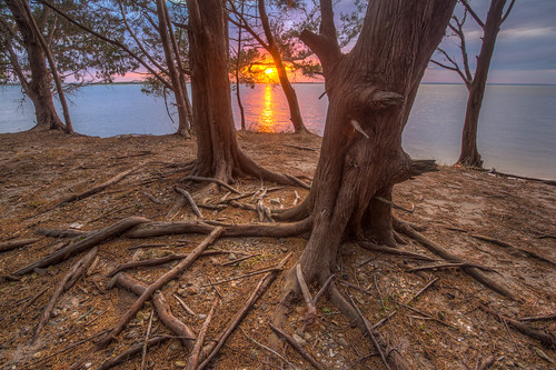 park sunset red state florida fort roots southern cedar hdr fernandina clinch