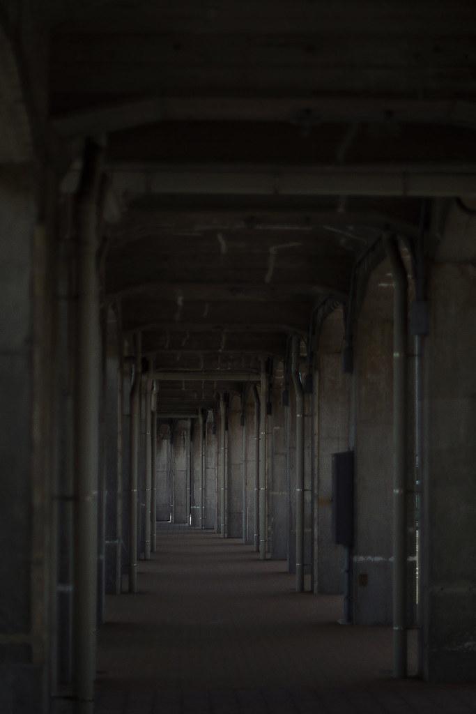 ヨコハマ散歩 開港の道の写真