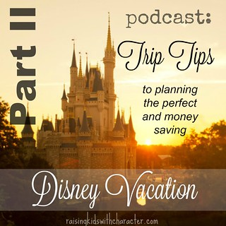 Podcast Part II - Trip Tips to Planning the Perfect & Money Saving Disney Vacation