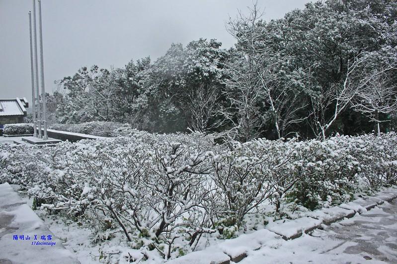 2016-台北陽明山-瑞雪-難得一見的雪白山景-17度C隨拍 (29)