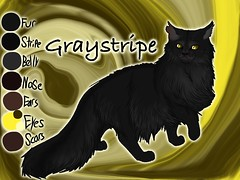 Graystripe of ThunderClan3