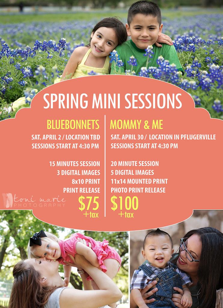 bluebonnet mini sessions - Toni Marie Photography