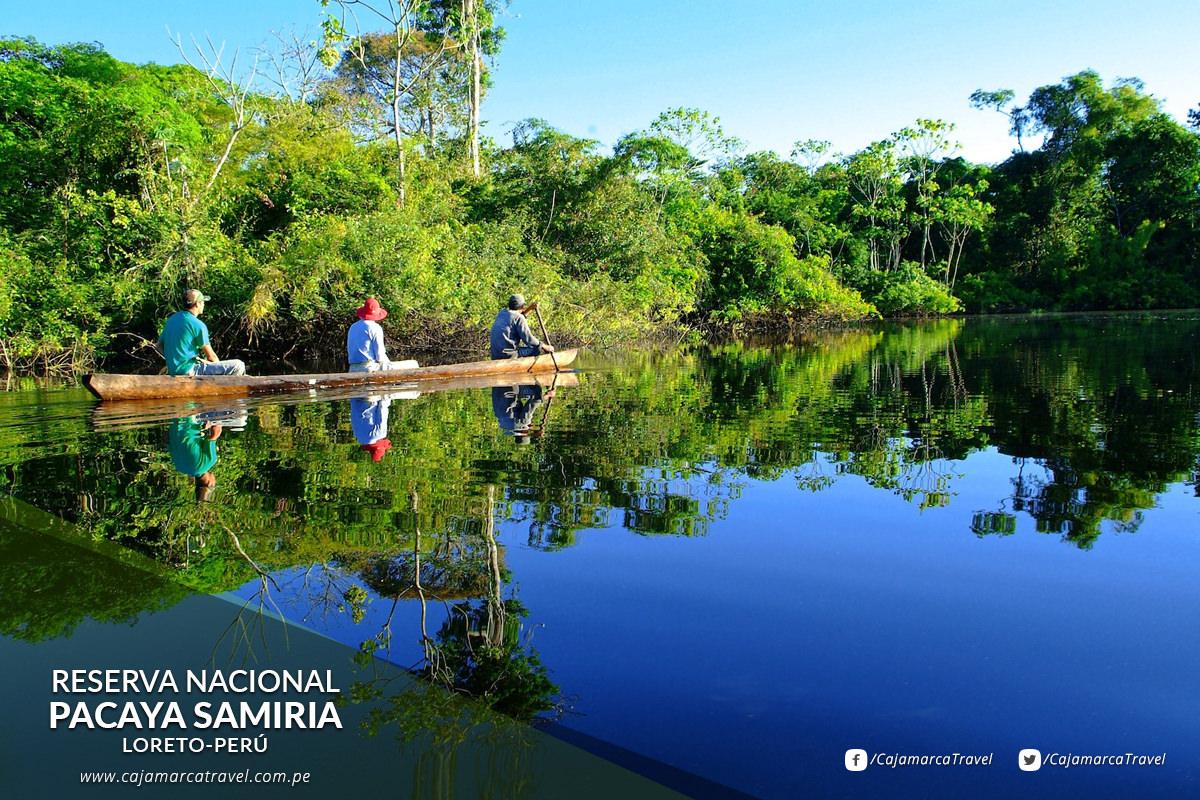 Pacaya Samiria es la Reserva Nacional más grande del Perú lugar de excepcional belleza y uno de los lugares de mayor riqueza de fauna y flora del mundo.