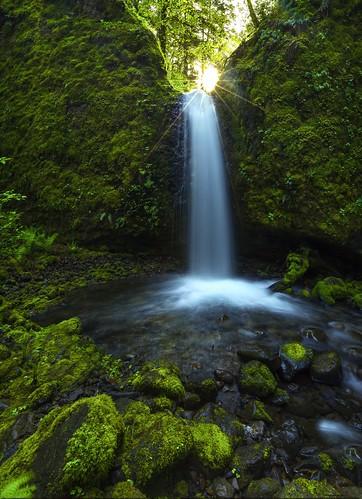 hiking trail sunburst columbiagorge oregonstate ruckelcreek mossygrottofall