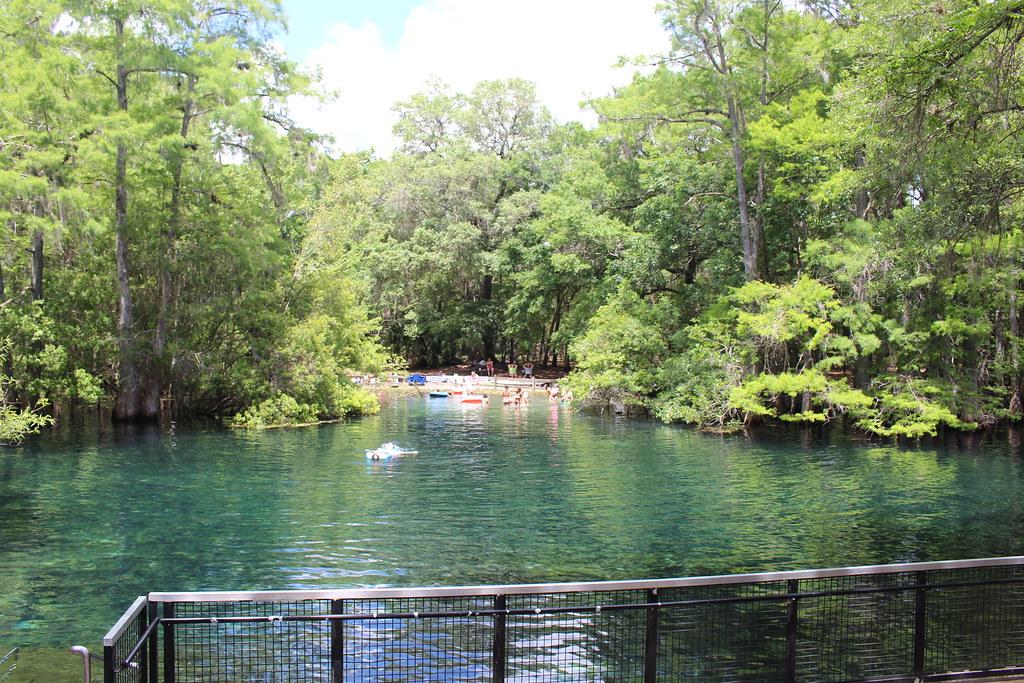 Manatee Springs State Park Florida Around Guides