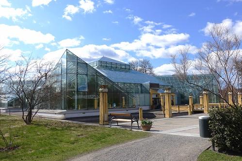 E. Anderson's greenhouse