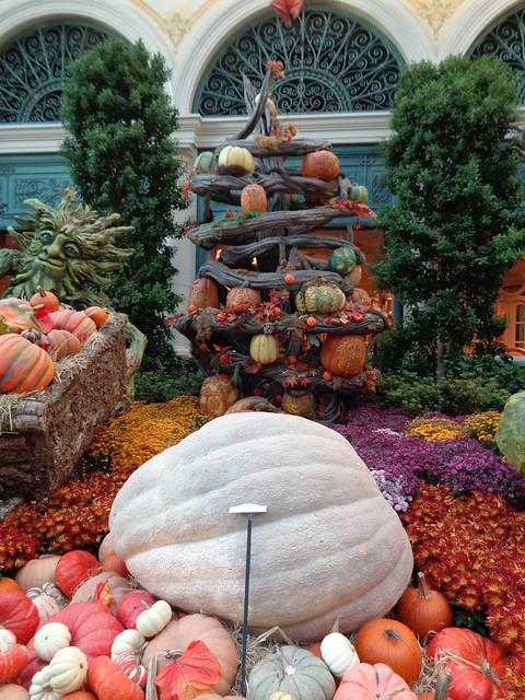 Autumnal Floral Displays, Bellagio, Las Vegas NV