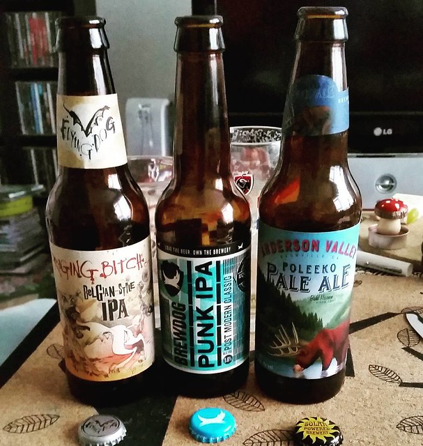 Some beers we tried last night and arranged in the order of preference. #specialitybeers #beer #ragingbitchipa #punkdogipa #paleale #albertheijn #smalltownbrewery