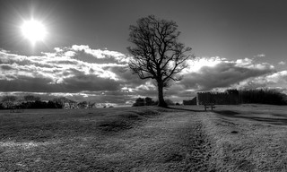 Lickey hills off Monument lane. | by mikewilson2249