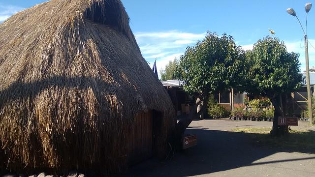 Ruka in City of Villarica, Chile