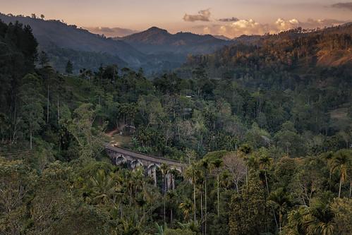 holiday mountains tea outdoor hiking urlaub ella hills srilanka