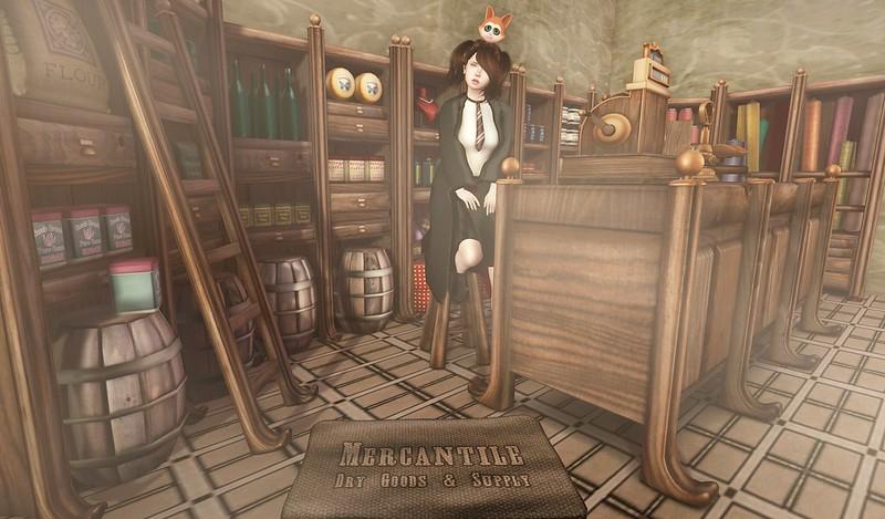 The Student Merchant