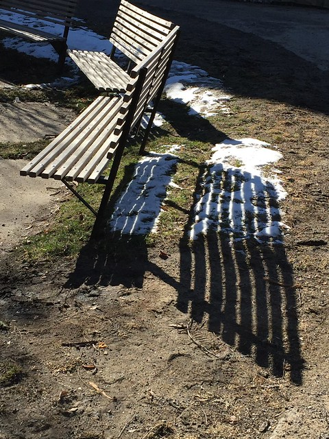 Benches in the Sun