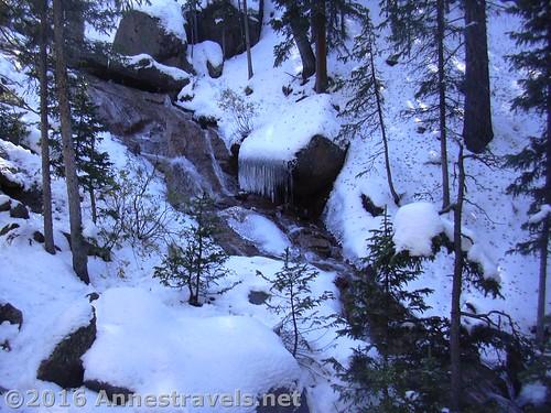 Snowy stream near Horsethief Falls, Pike National Forest near Divide, Colorado