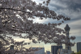 Tennoji Park area, Osaka on APR 05, 2016 (14)