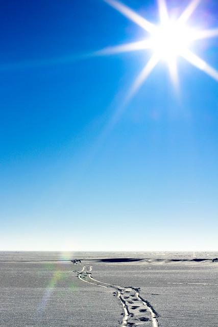 Ventės ragas - Nida ledu