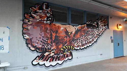 Mural project - Hutchison Hawks!
