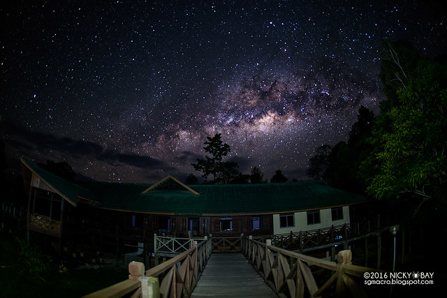 Maliau Basin Milkyway - DSC_0218