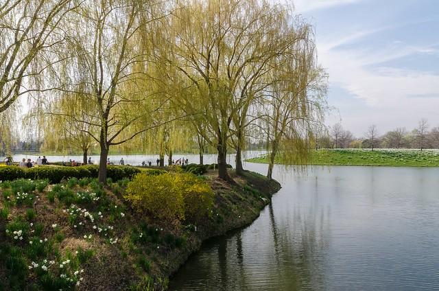 Spring Sunday in Chicago Botanic Garden
