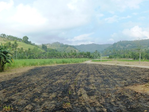 P16-Negros-San Carlos-Dumaguete-Route (14)
