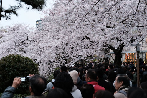 Classic Chrome Sakura viewing at Chidorigafuchi moat 31