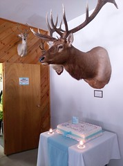 Kettle River Wildlife Club