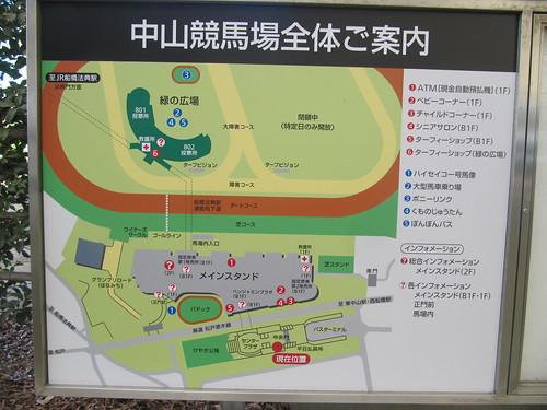 中山競馬場のマップ