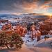 Bryce sunrise by Yanbing Shi