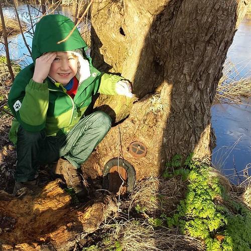 Found a secret house ... gnomes? #geocaching #geocache #gnome #vic #leest #heffen #sneeuwwitje #snowwhite
