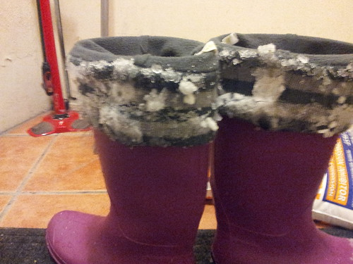 Icy Galoshes