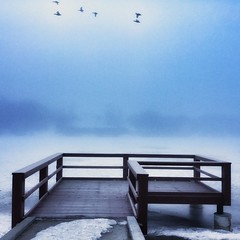 Some days are like a thick fog where you can only see as far as the end of the dock...
