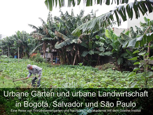 Urbane Landwirtschaft und Gärten in Bogotá, Salvador und São Paulo