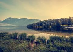Vintage Lake