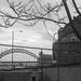 Newcastle Upon Tyne, 20 Mar 2016