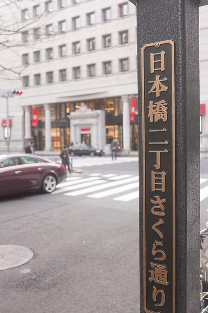 Sakura blooming at Sakura street 05