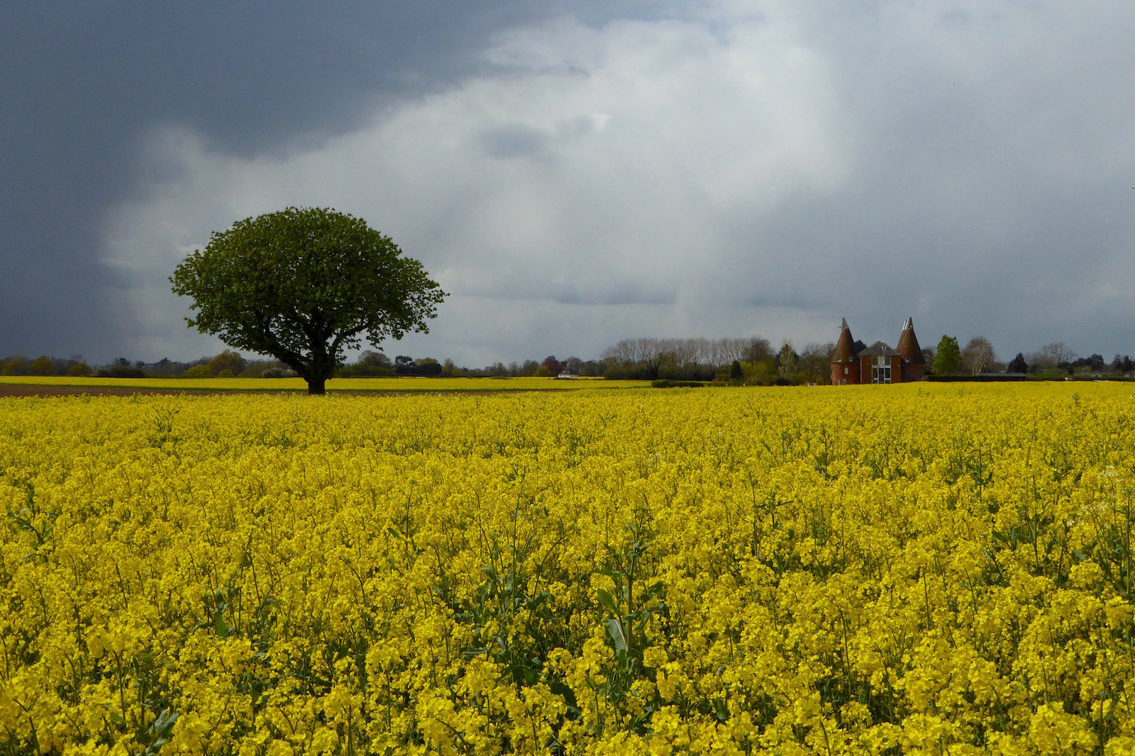 Hadlow, Kent Tonbridge Circular walk