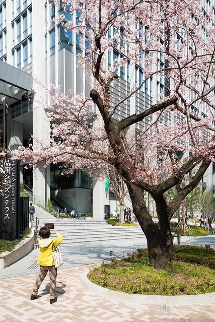 Exterior of Shinagawa Season Terrace (品川シーズンテラス)